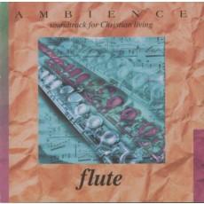 Ambience Flute - 플릇 연주