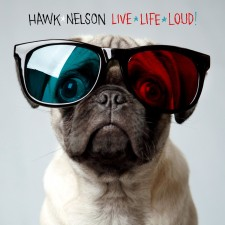 Hawk Nelson - Live Life Loud (CD)